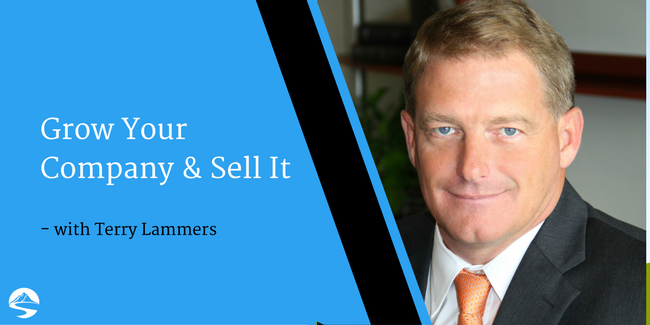Grow Your Company and Sell It – Interview with Terry Lammers